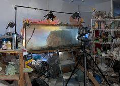 Studio view for Hawaii, 2013