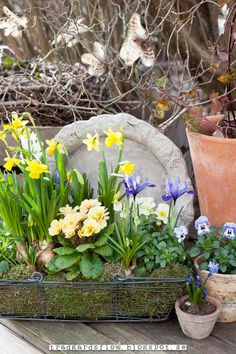 Trädgårdsflow: Relocating pots
