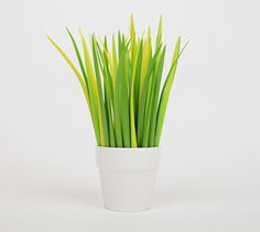Because who doesn't want pens that look like grass blades? Trick question. We all do. #officesupplies