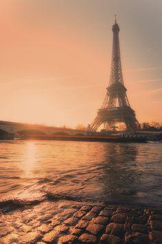 Paris / Flying birds: Foto