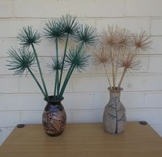 Agapanthus flowers which have dried can be used to decorate your home.