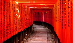 """""""A journey of a thousand miles begins with a single step."""" Lao Tzu  Photo from Abduzeedo Design's Beautiful Japan"""
