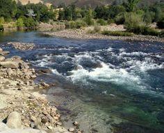 Endless Recreation And Family Fun Abound At Our Ponderosa RV Resort In California Visit The Thousand Trails Park On American River Lotus