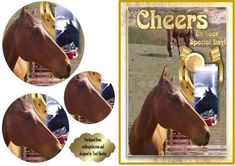 A great card for the horse lover. maybe they ride them, bet on them train them or just love them. The words say Cheers on your special day, so it could be for many reasons, and for either male or female. Special Day, Cheers, Decoupage, Birthday Cards, Card Making, Greeting Cards, Basket, Train, Horses