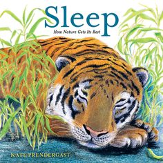 Sleep: How Nature Gets Its Rest by Kate Prendergast Sleeping Alone, Facts About Dreams, Toddler Books, Cat Colors, Bedtime Stories, Cool Pets, Book Gifts, Nonfiction Books