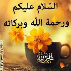 Salam Image, Hi Images, Assalamualaikum Image, Assouline, Good Morning Images, Beautiful Flowers, Wine Glass, Prayers, Doa Islam