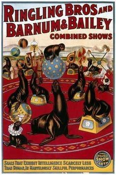 After Bailey's death in 1906, the Ringlings bought the Barnum & Bailey Circus in 1907. The brothers continued operating the two circuses separately until 1919. Finally, a new circus opened in New York City on March 29, 1919, under the name Ringling Bros. and Barnum & Bailey Combined Shows.