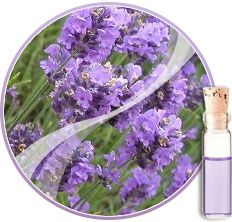 To make lavender water: put one ounce of dried lavender in a quart mason jar, and then filling the jar with boiling water and allowing it to steep for 4 hours before straining out the lavender.