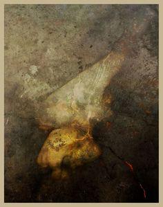 iPhoneography, Dangerous Veils, Armin Mersmann