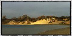 Het Wed, mist en zon op 13-11-2012
