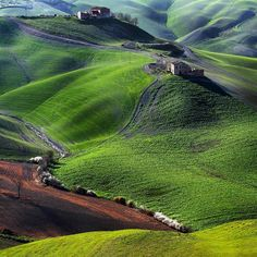 Tuscany. I have traveled to Italy 3 times.  It is my favorite country!