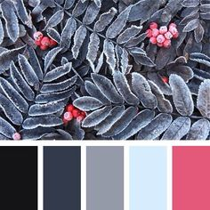 A cool colour palette with an almost-red