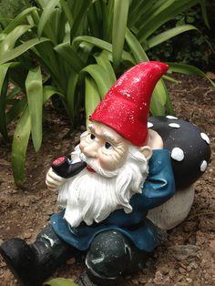 Quirky garden gnome