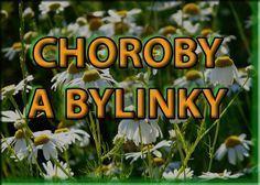 Vyberte si neduh a hledejte bylinky Healing Herbs, Medicinal Herbs, Look Body, Dieta Detox, Edible Flowers, Herbal Tea, Natural Medicine, Natural Cures, Herbal Remedies