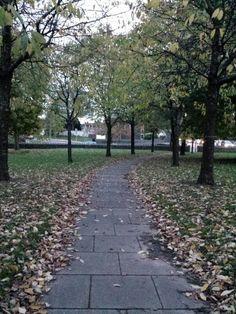 Fairwater Green : Autumn Twilight