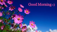 15+ Good Morning Friend Have a nice Day Images