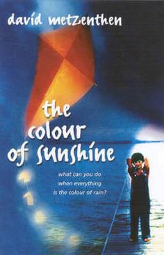 The Colour of Sunshine by David Metzenthen (F MET)