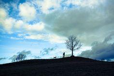 landscapes.paisajes.soledad.loneliness