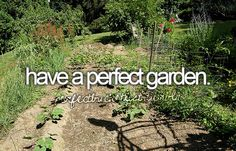 When I live on my farm I'll have a fabulous garden full of wonderful flowers, veggies and fruit!