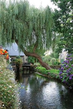 Such a pretty backyard! Beautiful World, Beautiful Gardens, Beautiful Places, World Pictures, Le Moulin, Amazing Nature, Pretty Pictures, Beautiful Landscapes, The Great Outdoors