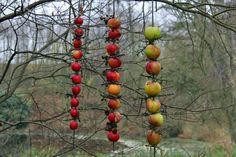 Æblestiger til fuglene