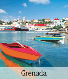 Grenada Citizenship By Investment  A Great Opportunity to Invest and Live in Paradise Check if you Qualify   Be part of a limited and exciting Citizenship by Investment opportunity through CTrustGlobal a Government Authorized Marketing Agent for Grenada Citizenship by Investmenr Program..  As Grenada Government is very keen to preserve the