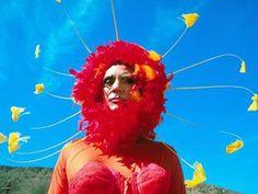 Terence Stamp The Adventures of Priscilla, Queen of the Desert  BERNADET