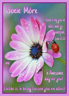 Good Morning Prayer, Good Morning Good Night, Morning Prayers, Good Morning Wishes, Morning Messages, Good Morning Quotes, Lekker Dag, Evening Greetings, Afrikaanse Quotes