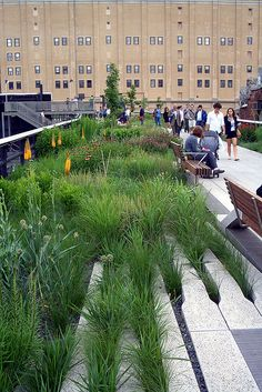 Oudolf ~ High Line, New York, NY.               _/////_