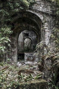 Jungle ruins