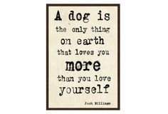 Dog Quote : A dog is the only thing on Earth Thats Loves you More