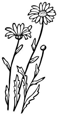 Ephemeraphilia: Botanical