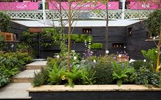 Use of different levels to make the garden appear considerably bigger. You step up into a raised area by the water feature and then down into the sunken seating area.