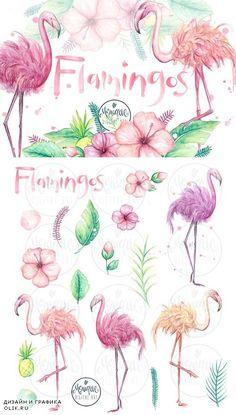 Flamingo clipart, watercolor 1572835