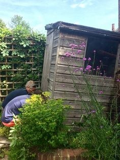 How to avoid a garden shed disaster