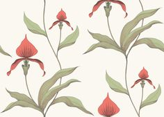 Orchid (95/10054) - Cole & Son Wallpapers - Make an impact with this stunning poppy red orchid design, pale green leaves and a soft off white background – perfect for feature walls. Available in other colours. Please ask for a sample for a true colour match.