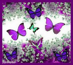 I do not regard it as wrong to take my life, because I simply change my place of residence and go where my wife and baby are. Butterflies Flying, Paper Butterflies, Beautiful Butterflies, Purple Love, All Things Purple, Purple Stuff, Purple Butterfly, Butterfly Flowers, Butterfly Pictures