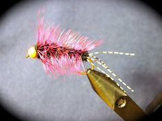 Pink Steelhead Stonefly nymph. They love these in the Midwest!