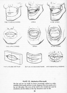 Delineate Your Lips Drawing the Head and Face Part 12 - How to draw lips correctly? The first thing to keep in mind is the shape of your lips: if they are thin or thick and if you have the M (or heart) pronounced or barely suggested. Drawing Skills, Drawing Lessons, Drawing Techniques, Drawing Tips, Drawing Tutorials, Drawing Art, Figure Drawing, Art Tutorials, Andrew Loomis