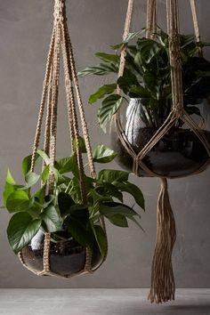 idee-suspensions-macrame-plantes-vertes-decoration-roselia-garden-4.jpg 1023×1536 pixels