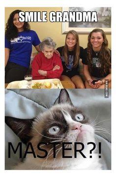 smile grandma Grumpy Cat Humor, Funny Cat Memes, Funny Fails, Memes Humor, Grandma Memes, Hahaha Hahaha, Friday Humor, Funny Friday, Meme Comics