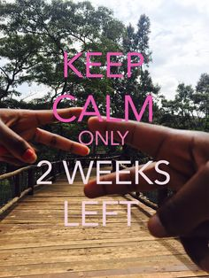 88e4392c0f07d countdown, 2 weeks left, long distancerelationship Wedding Countdown Quotes
