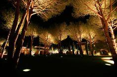 Arquitetura + Iluminação ~ Mais Arquitetura