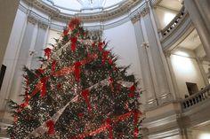 Georgia capitol tree. Click for holiday destinations in Georgia!