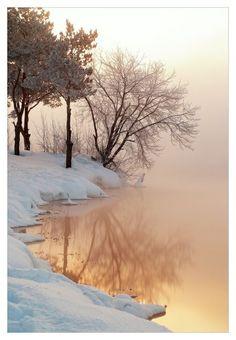 Beautiful Landscape photography : Winter mist