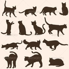 Silhouettes of Cats  - Animals Characters