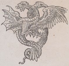 """Dragons are legendary creatures, typically with serpentine or otherwise reptilian traits, that feature in the myths of many cultures. Dragon Medieval, Medieval Art, Medieval Tattoo, Art And Illustration, Fantasy Creatures, Mythical Creatures, Illustrations Harry Potter, Diy Außenbar, Le Sphinx"