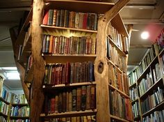Tree Bookshelf, Richmond, England