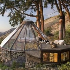 A 70s built yurt with a glass roof showcases the old school way of tiny house living.