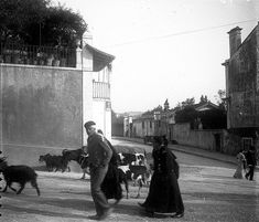 Lisboa de Antigamente: Calçada Santa Helena, Antique Photos, Capital City, Good Old, Urban, Fictional Characters, Buildings, Old Photographs, Old Pictures